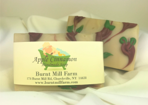 Apple Cinnamon Soap